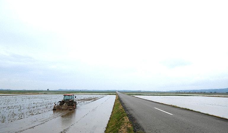 羽咋市農業